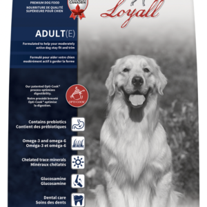 Loyall Adult Dog