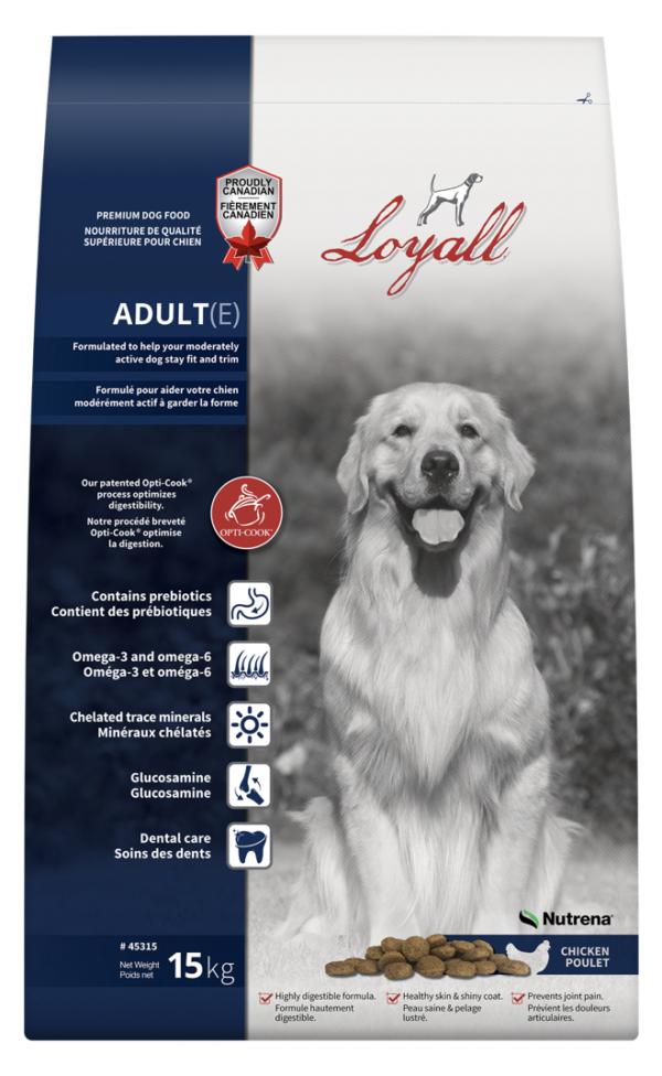 Loyall Adult Dog
