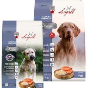 Loyall Salmon Dog Food