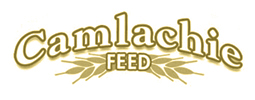 Camlachie Feed