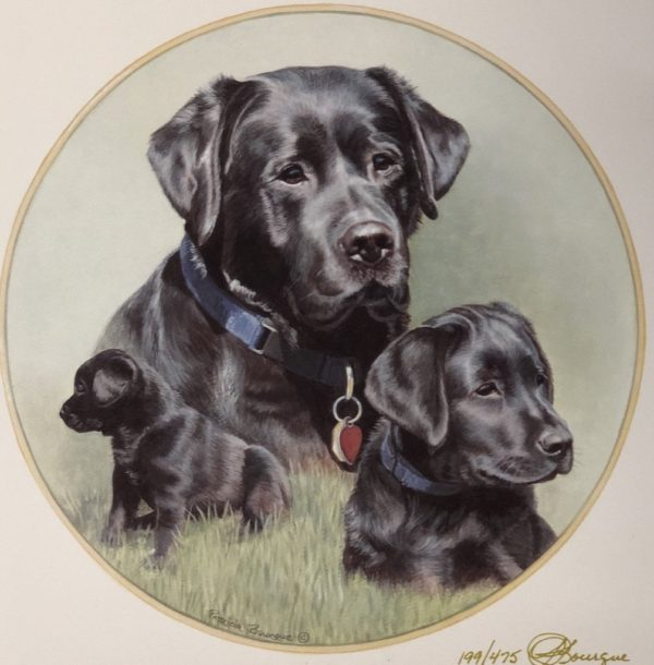 Art Print Black Lab