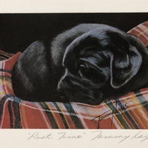 Art Print Black Lab Puppy Sleeping