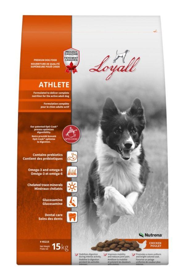 Loyall Active Dog